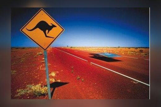 Australijoje lenktyniauja saulės baterijomis varomi automobiliai