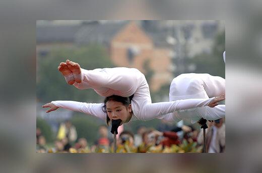 Kinių akrobačių pasirodymas (Kinija)