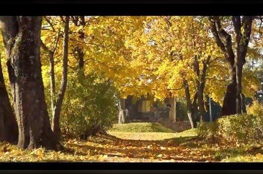 Studentas sukūrė jautrų vaizdo klipą savo miesteliui išgarsinti
