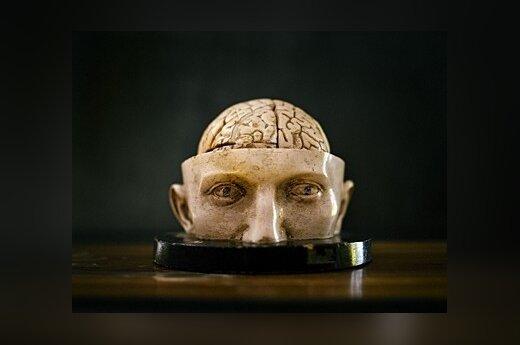 Травмы мозга вылечат половым гормоном