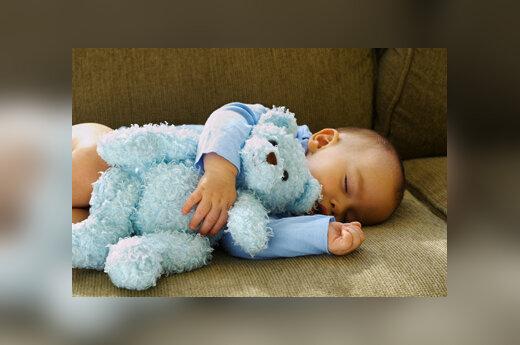 Pliušinis žaislas, meškinas, kūdikis, naujagimis, vaikystė, miegas