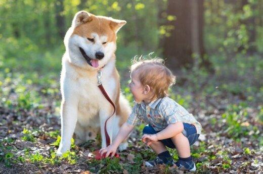 Šuo ir berniukas