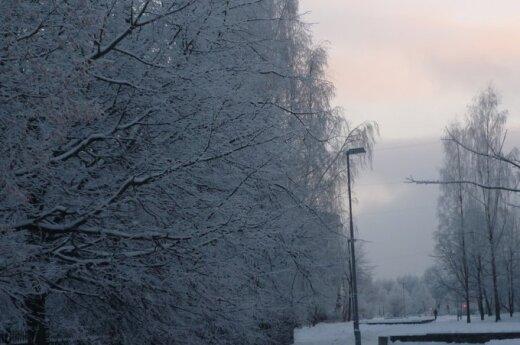 Artėjant pavasariui skaitytojai dalinasi žiemos vaizdais