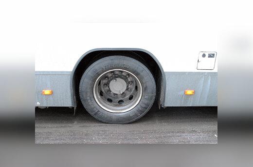 Autobuso ratas