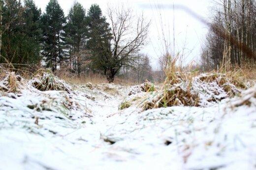 Зима напомнит о себе