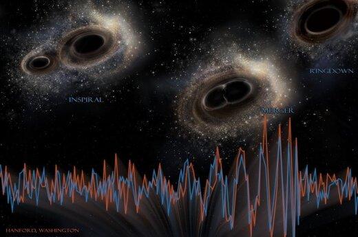 Gravitacinių bangų signalas, atsklidęs iš susijungiančios juodųjų skylių poros, užfiksuotas dviejuose detektoriuose JAV: Vašingtone ir Luizianoje. ©NASA APOD