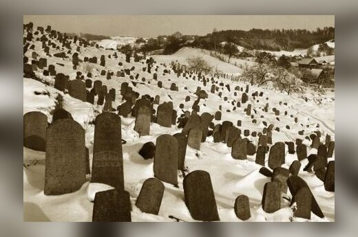 The old Jewish cemetery, 1963-1965