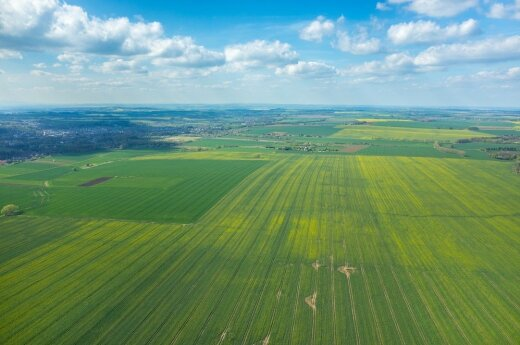 Lithuania to make it easier for foreigners to buy land