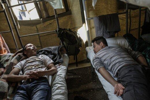 Imigrantų darbo sąlygos Rusijoje – pasibaisėtinos