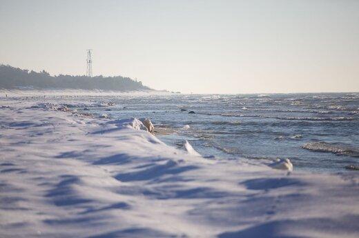Three Lithuanians cross the Baltic Sea on skis