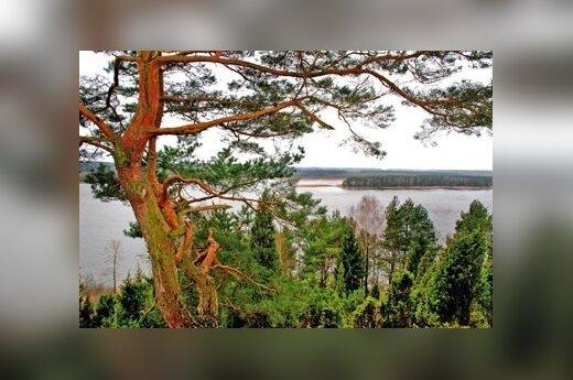 В Каунасском море утонули два человека