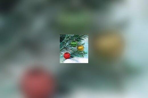 Kalėdos artėja