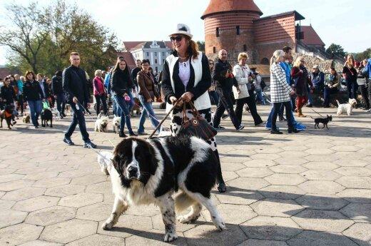 Вокруг Каунасского замка прошлись сотни любителей животных