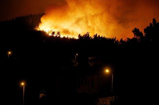 Pragaištingas miško gaisras Portugalijoje