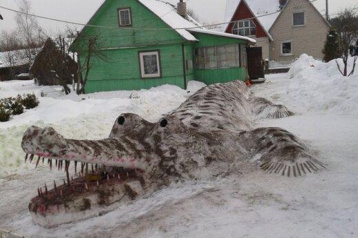 Krokodilas iš sniego, G.Šereikaitės nuotr.