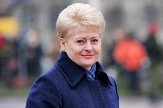 Депутаты: президент – самый влиятельный человек в Литве