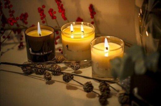 В Америке полтора миллиона человек встретили Рождество при свечах