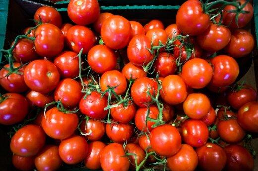 Pomidorą prapjovusią merginą nustebino radinys viduje