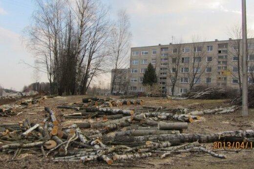 Vilniaus gyventojai pasipiktino iškirstais medžiais