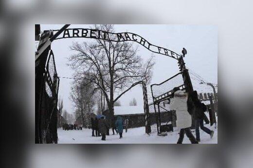 """Польская полиция нашла надпись """"Arbeit Macht Frei"""""""