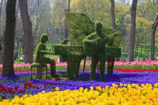 Atostogų ankstyvą pavasarį privalumai – mažiau grūsties ir pasakiškas sodų žydėjimas