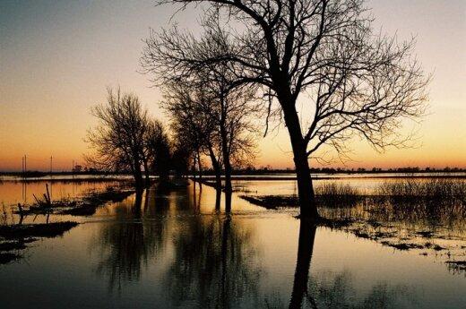 Pomysł na weekend: delta Niemna