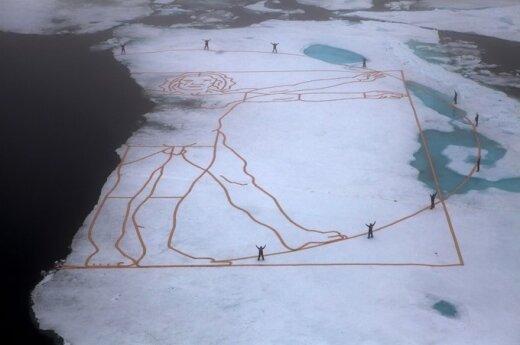 Копия произведения Леонардо да Винчи призвана привлечь внимание к проблеме Арктики