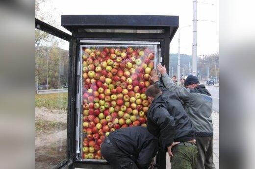 В рекламе на остановках – настоящие яблоки