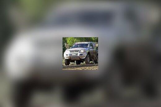 """""""Mitsubishi"""""""