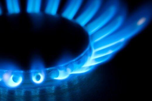 В декабре природный газ в Литве подешевел на 2%, а за год - на 0,8%