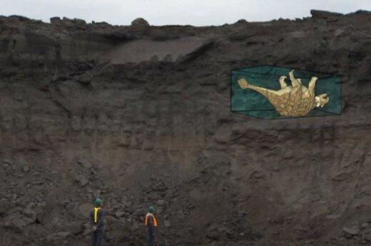 Atkurta išskirtinai gerai išsilaikiusio dinozauro fosilija