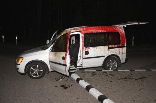 Пьяный водитель сбил лося