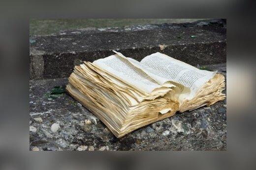 """Историк: национальная история должна включать и """"неудобные"""" страницы"""