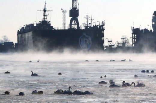 Kaliningrado uostas