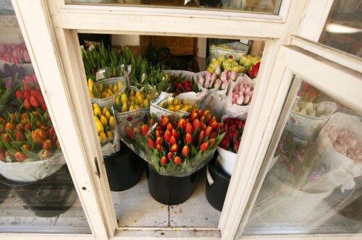 Policija ir mokesčių inspektoriai nuskynė gėlių verslo žiedelius