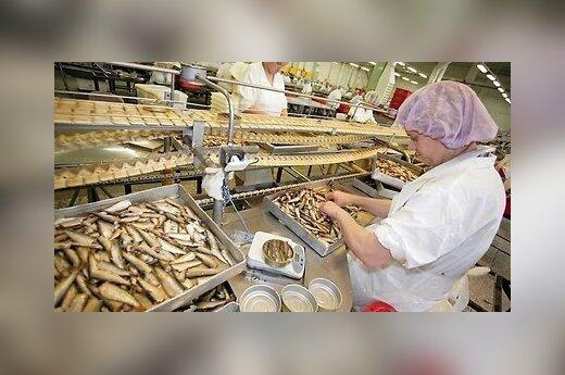 Rosja zakazała importu szprotów z Polski