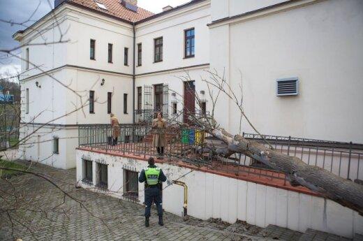 Medis užvirto ant Italijos Ambasados
