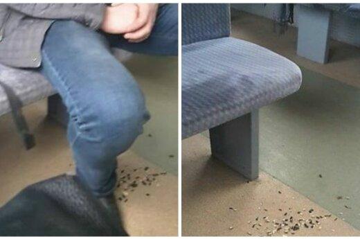 Po traukinio keleivio poelgio suprato – iš išvaizdos apie žmogų spręsti negalima
