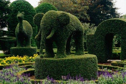 Skulptūrinis sodas