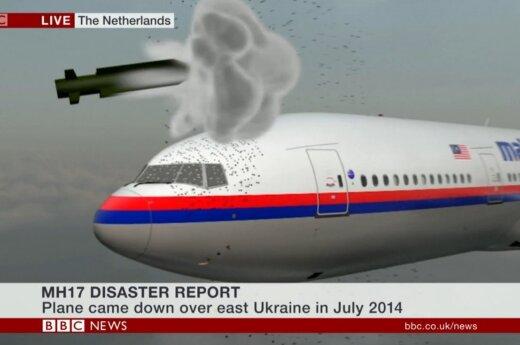 Paskelbta galutinė ataskaita: kas iš tiesų Ukrainoje nutiko Malaizijos lėktuvui
