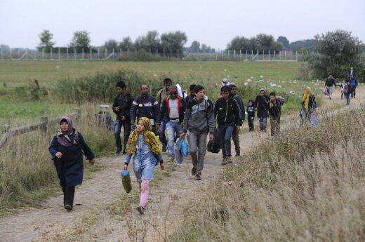 Правительство одобрило переселение 1105 беженцев в Литву