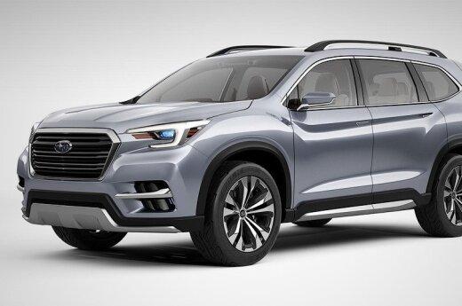 """""""Subaru Ascent"""""""