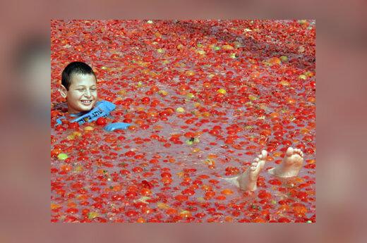 Berniukas maudosi pomidorų jūroje