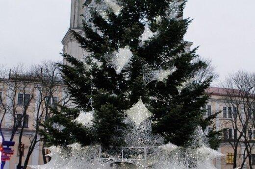 В Каунасе в субботу зажгут огни на главной ели