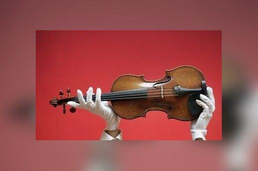Skradziono skrzypce Stradivariego