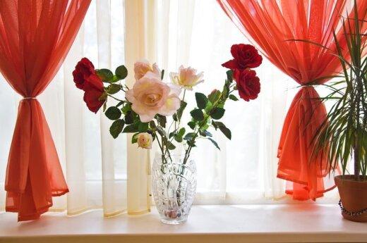 7 советов, как удачно выбрать шторы