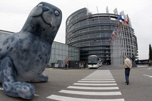 ЕС осудил Россию за отстранение оппозиции от выборов