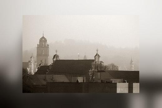Vilnius ruke, stogai