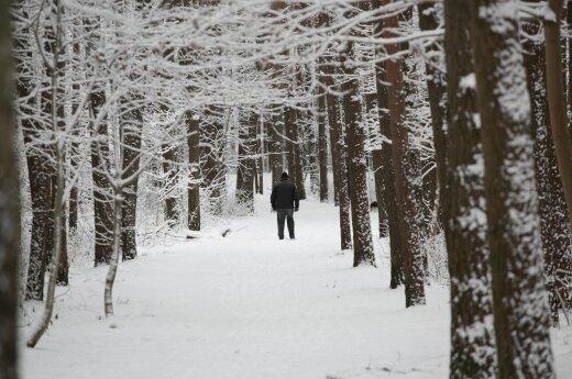 Orai: žiema įsišėls – plūstelės šaltis