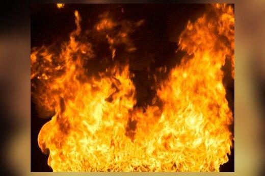 В Хабаровске ночной пожар уничтожил 14 автобусов